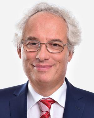 Nordheim Stiftung, Vorstand, Daniel Ajzensztejn